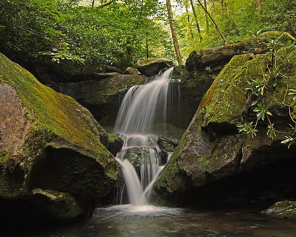 Appalachian Mountain Creek Print by Ulrich Burkhalter