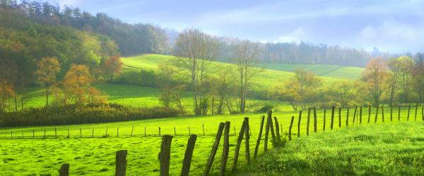 Appalachian Spring Morning Photograph