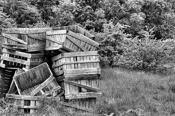 Apple Crate Bw Print by JC Findley