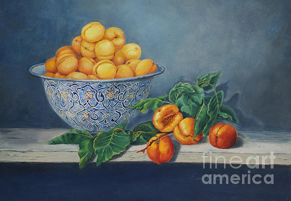 Apricots and Peaches Painting