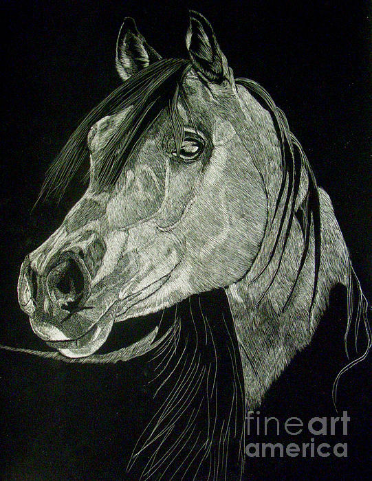 April The Horse Print by Yenni Harrison