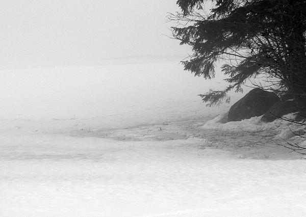 April Zen Moment At The Lake Print by Dagmar Ceki