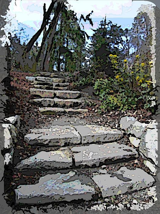 Arboretum Stairway Print by Tim Allen