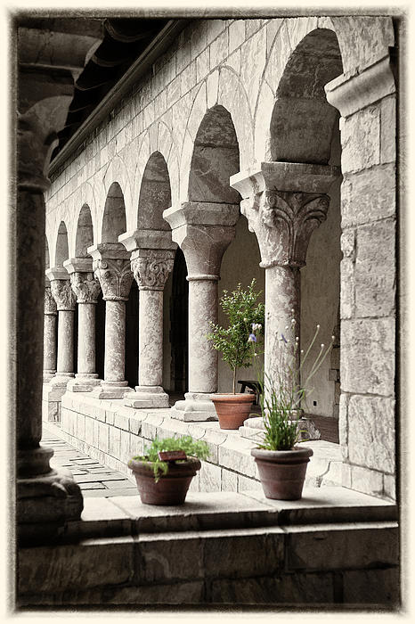 Arches And Columns By Roni Chastain