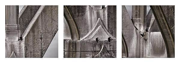 Architectural Detail Triptych Print by Carol Leigh