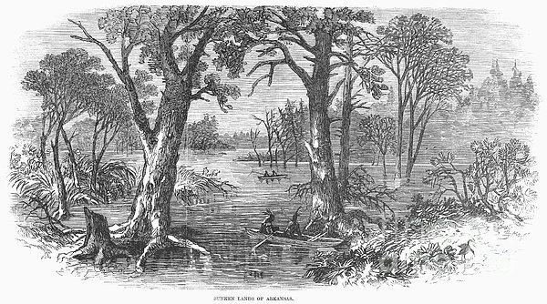Arkansas: Sunken Lands Print by Granger