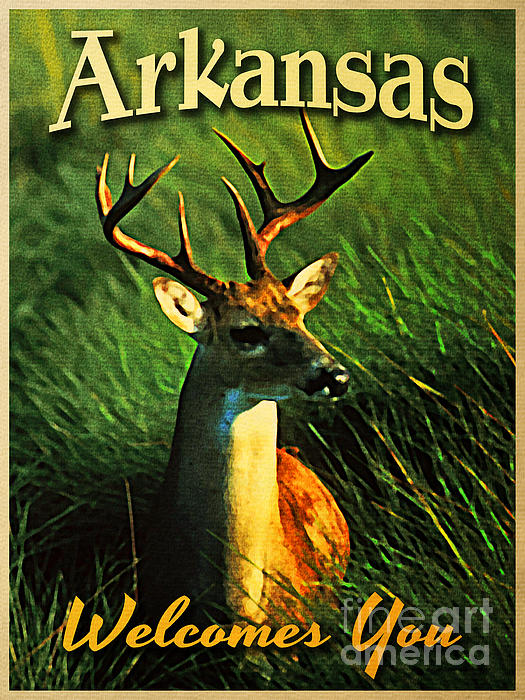 Arkansas White Tailed Deer Print by Flo Karp