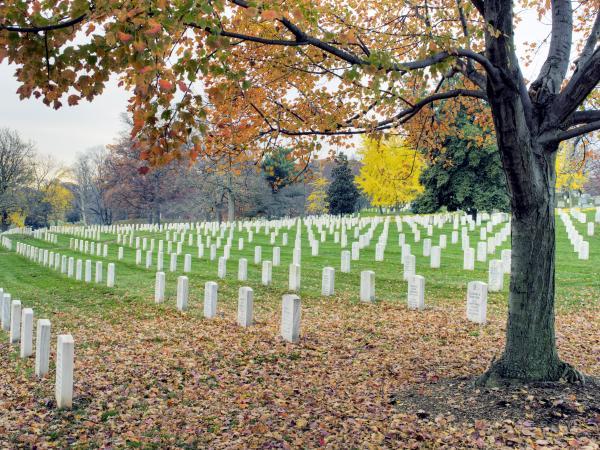 Arlington National Cemetery Virginia Print by Brendan Reals