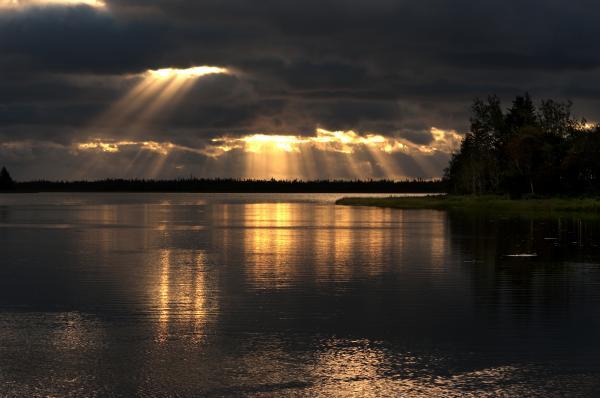 Array Of Light Photograph