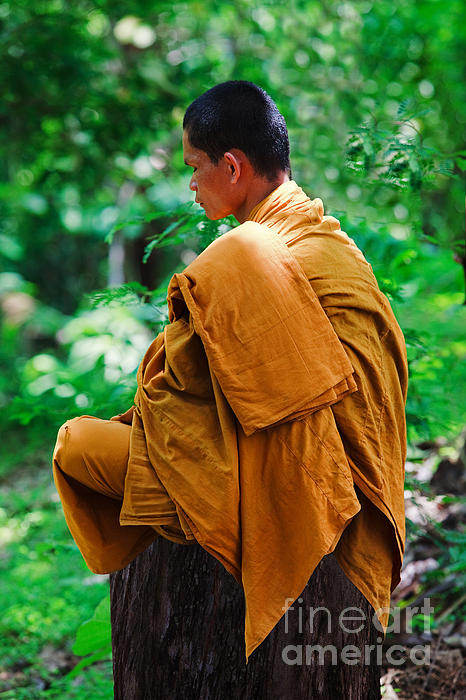 Art Of Meditation II Print by Pete Reynolds