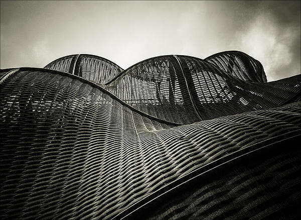 Artistic Curves Print by Lenny Carter