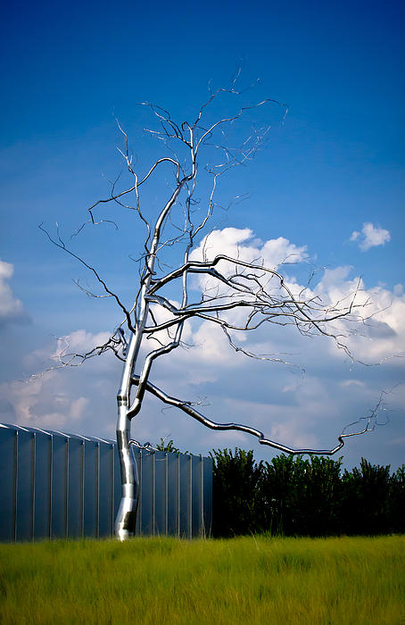 Swift Family - Askew - Roxy  Paine