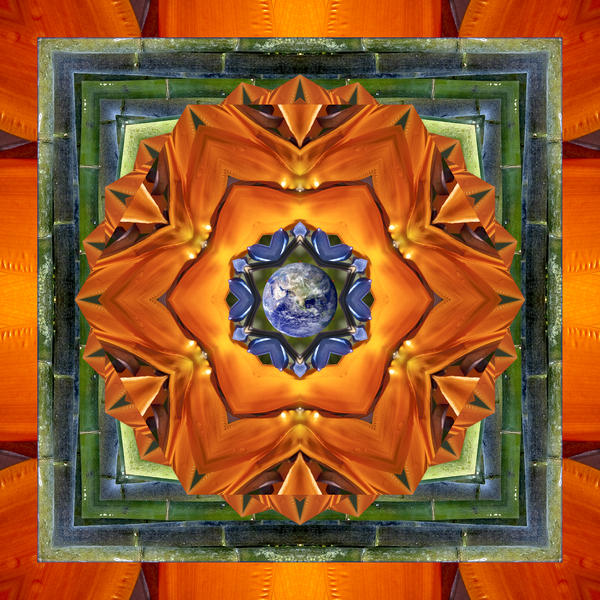 Aura Bamboo Print by Bell And Todd