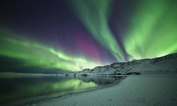 Aurora Borealis In Iceland Print by Arnar B Gudjonsson