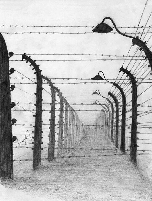 Annemeet Van der Leij - Auschwitz