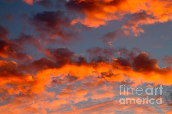 Australian Sunset Print by Louise Heusinkveld
