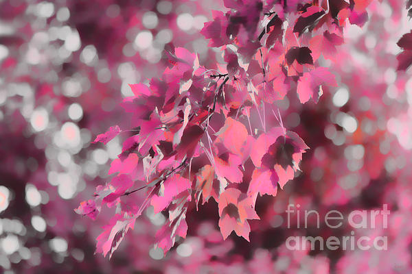 Autumn Blush Print by Jeff Breiman