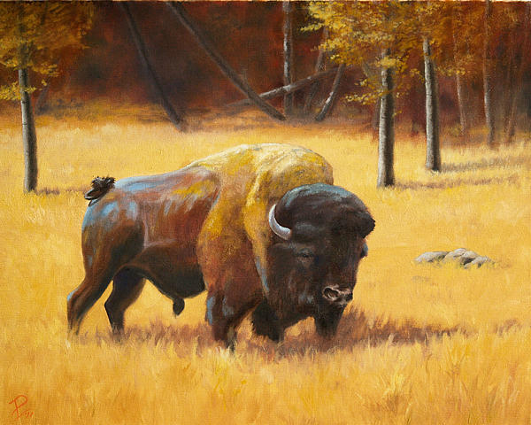 Autumn Bull Painting  - Autumn Bull Fine Art Print