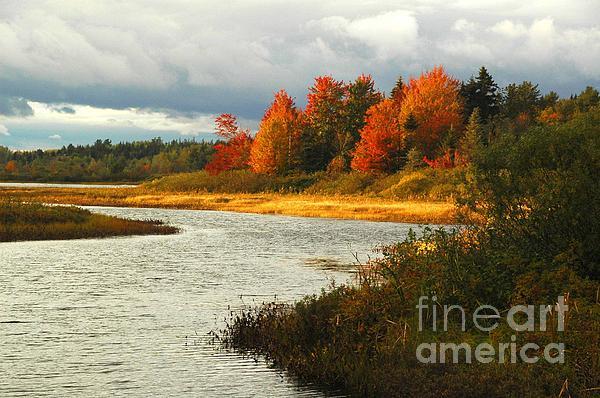 Alana Ranney - Autumn Colors