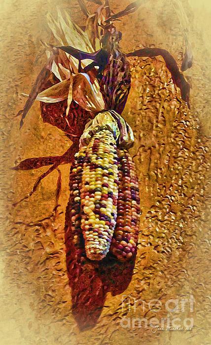 Joan  Minchak - Autumn Corn