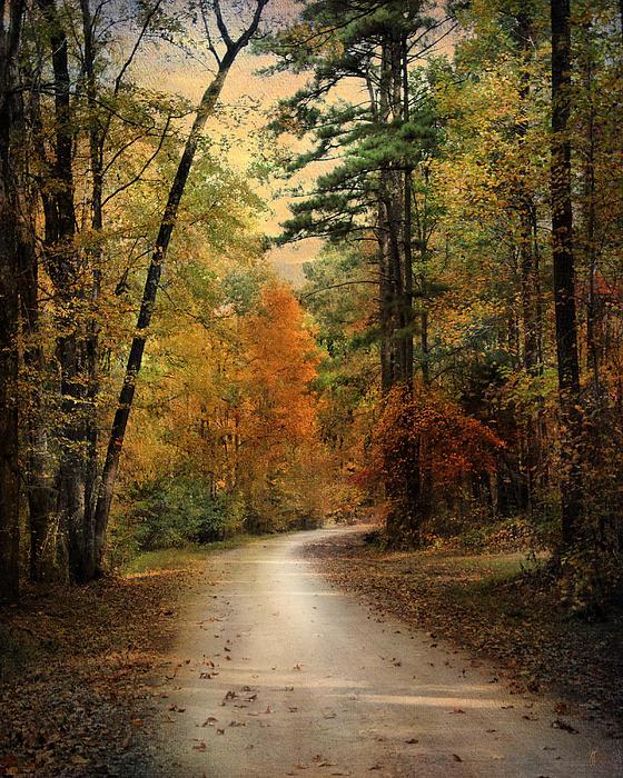 Autumn Forest 4 Print by Jai Johnson