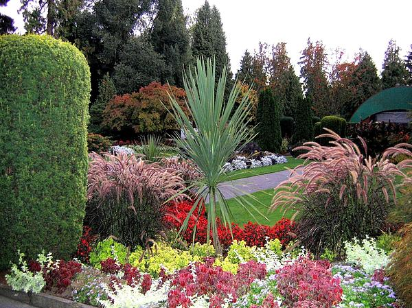 Autumn Gardens In Vancouver Print by Will Borden