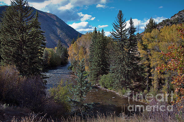 Joan Carroll - Autumn in the Rockies