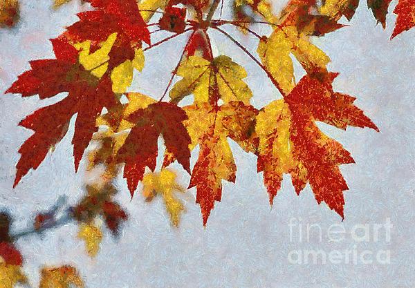 Autumn Leaves IIi Print by Billie-Jo Miller