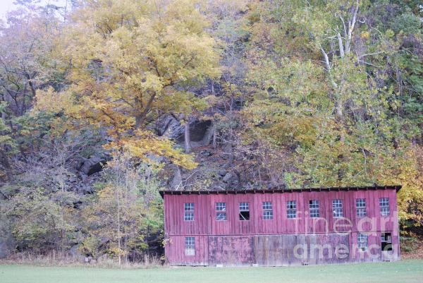 Autumn Poultry Barn Print by Randy Bodkins