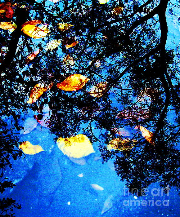 Autumn Reflection Print by Yury Bashkin