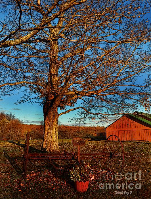 Autumn Rest Print by Diane E Berry