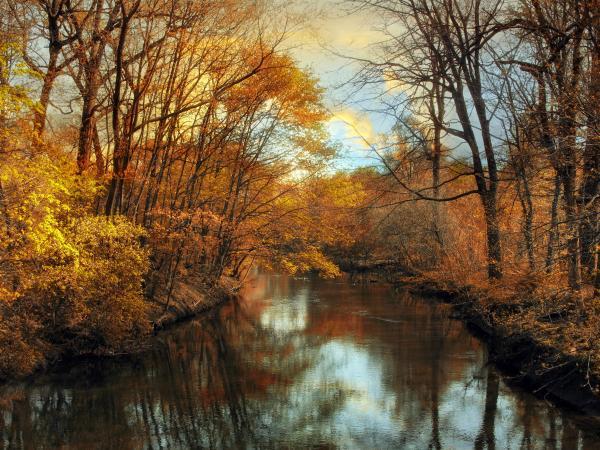 Autumn River Lights Print by Jessica Jenney