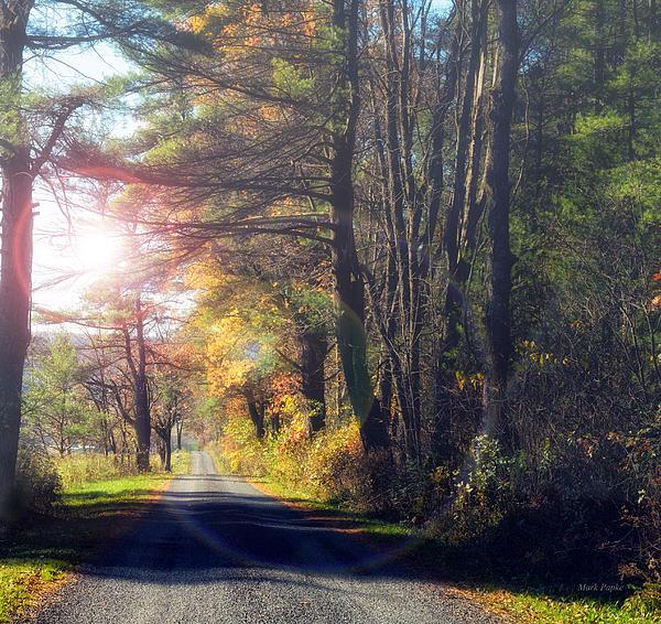 Mark Papke - Autumn Road