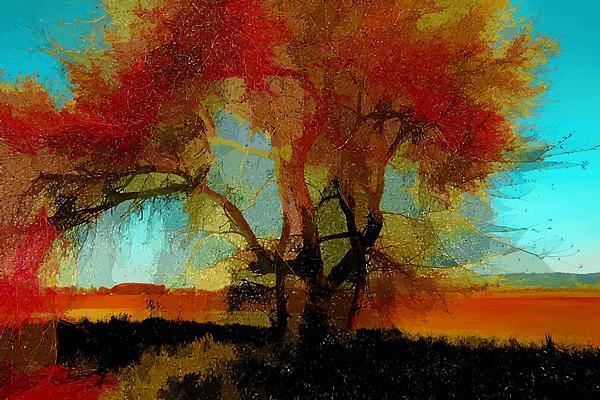 Autumn Tree Print by Bonnie Bruno