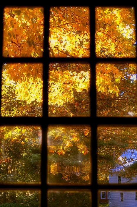 Autumn Window 2 Print by Joann Vitali