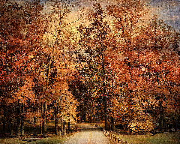 Autumn's Entrance Print by Jai Johnson