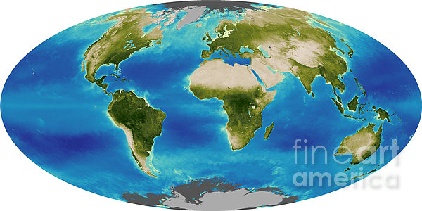 Average Plant Growth Of The Earth Print by Stocktrek Images