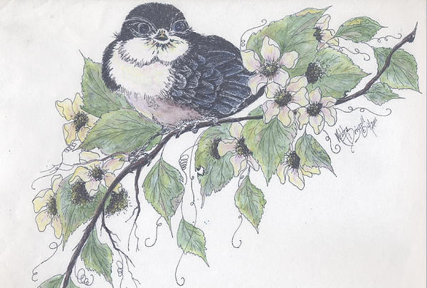 Baby Barn Swallow Print by Meldra Driscoll