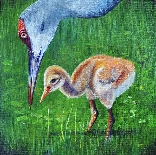 Baby Crane's Lesson Print by AnnaJo Vahle