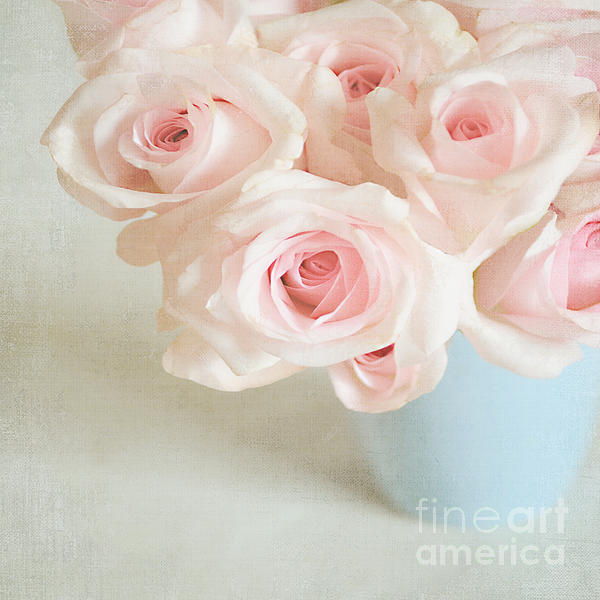 Baby Pink Roses Print by Lyn Randle