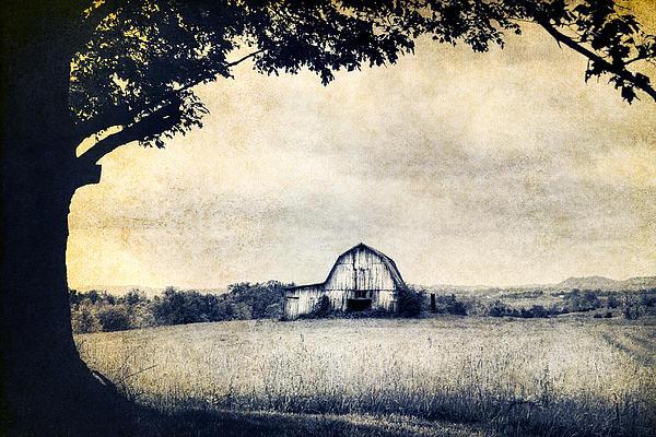 Back Roads Of Kentucky Print by Darren Fisher