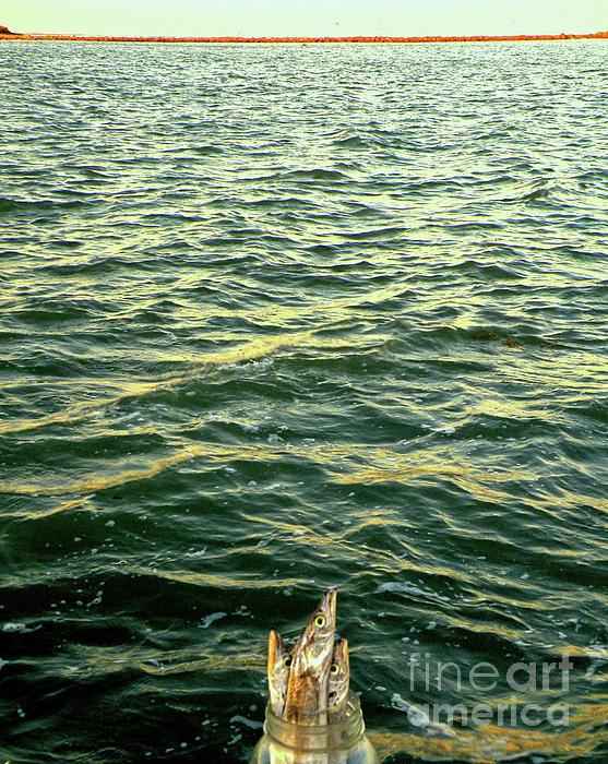 Back To The Sea Print by Joe Jake Pratt