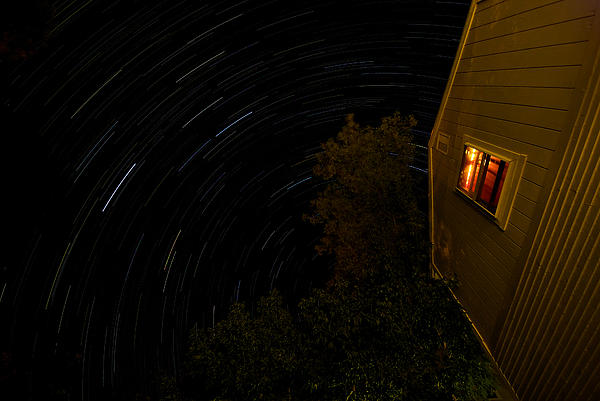 Backyard Star Trails Print by Mike Horvath