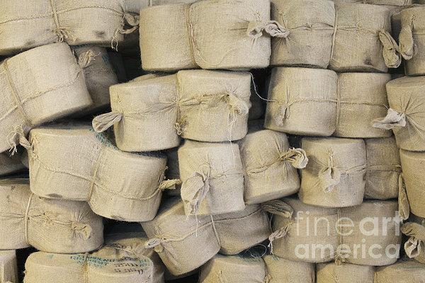 Bags Of Flax Print by Magomed Magomedagaev