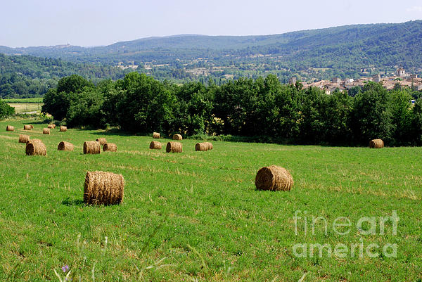Bales Of Hay Print by Andrea Simon