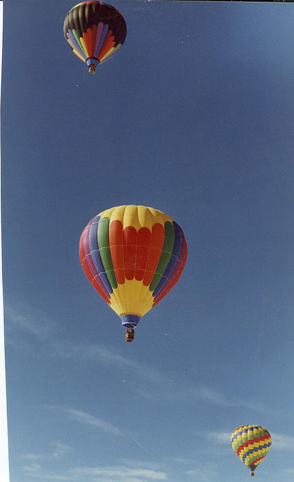 Balloons Trio Print by Stacey Grant