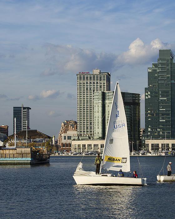 Baltimore Sail Boat - Maryland Print by Brendan Reals