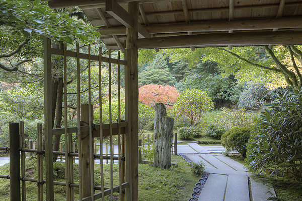 Bamboo Gate And Traditional Arch Print by Douglas Orton