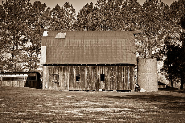 Barn And Silo 2 Print by Douglas Barnett