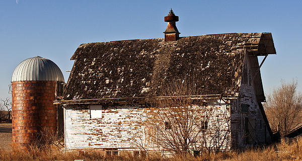 Barn And Silo Print by Edward Peterson